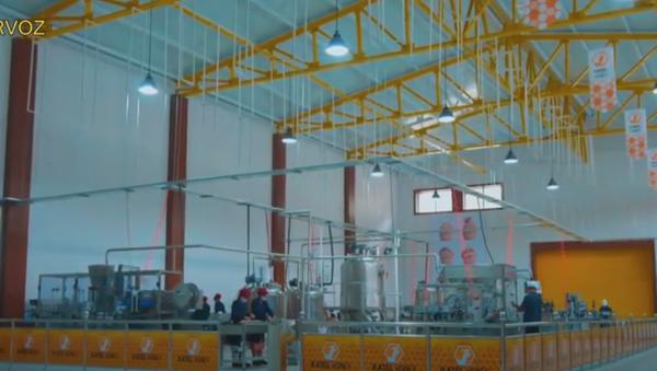 Завод по производству меда в Дарвозе - Sputnik Таджикистан
