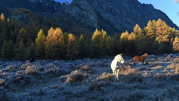 Осень в горах  - Sputnik Таджикистан