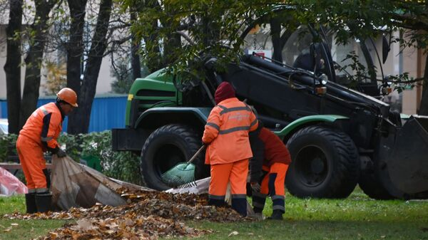 Сотрудники коммунальной службы убирают листву  - Sputnik Таджикистан