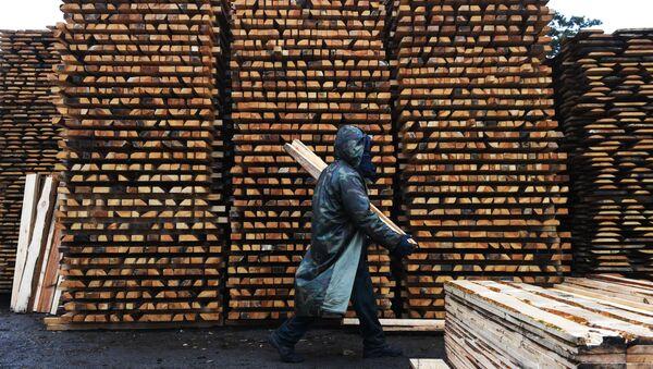 Лесозаготовительные работы  - Sputnik Таджикистан