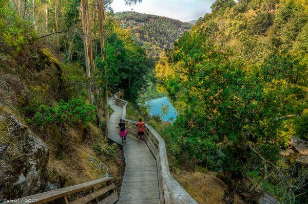 Туристическая зона Pasarelas del Paiva в Португалии, ставшая обладателем звания World's Leading Adventure Tourist Attraction 2020 - Sputnik Таджикистан