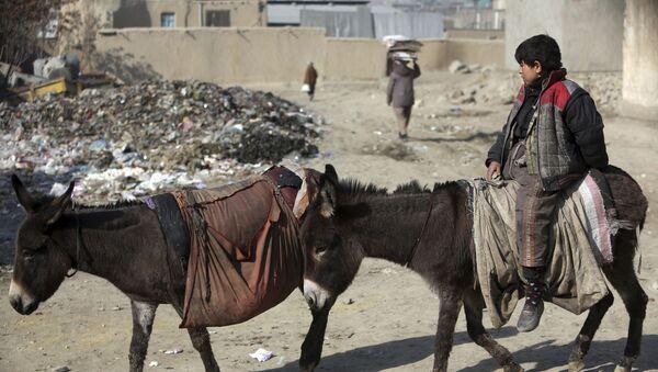 Мальчик едет на осле в Кабуле - Sputnik Тоҷикистон