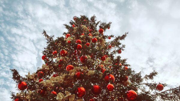Новогодняя елка - Sputnik Таджикистан