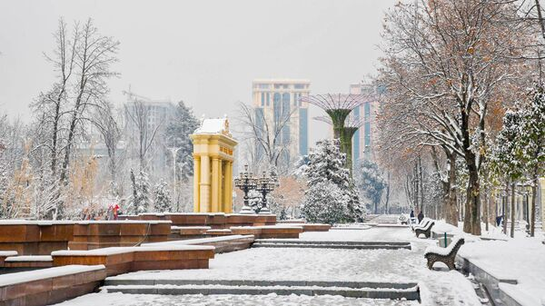 Зима в городе Душанбе - Sputnik Таджикистан