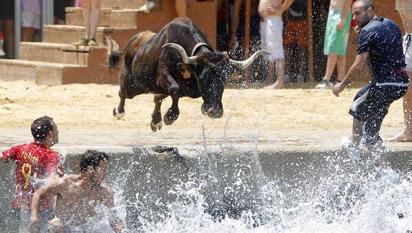 Бык прыгает в море во время испанского фестиваля Bous a la mar - Sputnik Таджикистан
