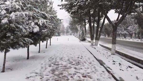 Снегопад в Худжанде 2020 - YouTube - Sputnik Таджикистан