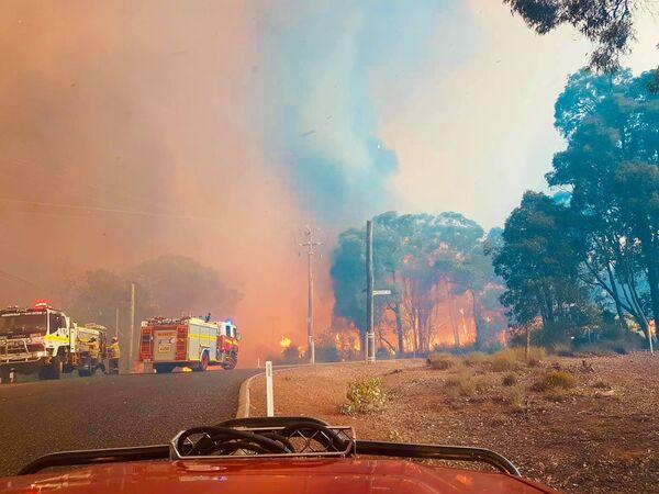 Пожарные на тушении пожара в Вуроло, недалеко от Перта, Австралия - Sputnik Таджикистан