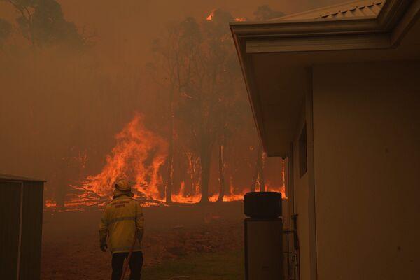 Австралийский пожарный готовится гасить лесной пожар - Sputnik Таджикистан