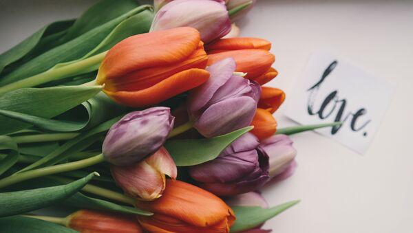 Букет тюльпанов и открытка на День святого Валентина - Sputnik Таджикистан