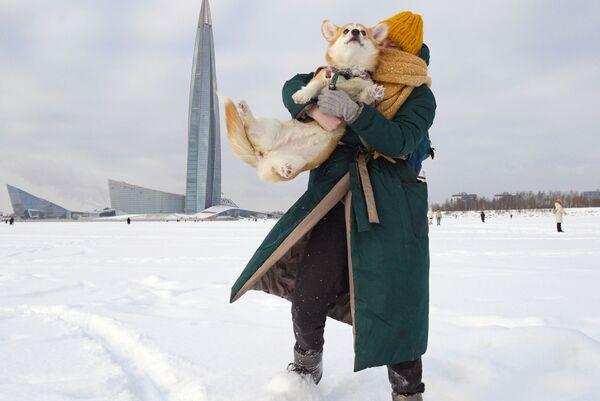 Уткнуться в мягкую шерстку своего питомца - очень приятно - Sputnik Таджикистан
