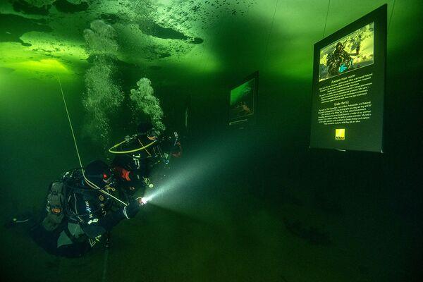 Погружение под воду - необходимое условие, наблюдать за действом с помощью техники не получится - Sputnik Таджикистан