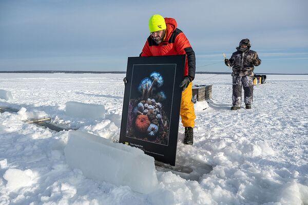 Выставка под названием Пока не растаял лед работает около острова Большой Крестовый с середины февраля - Sputnik Таджикистан