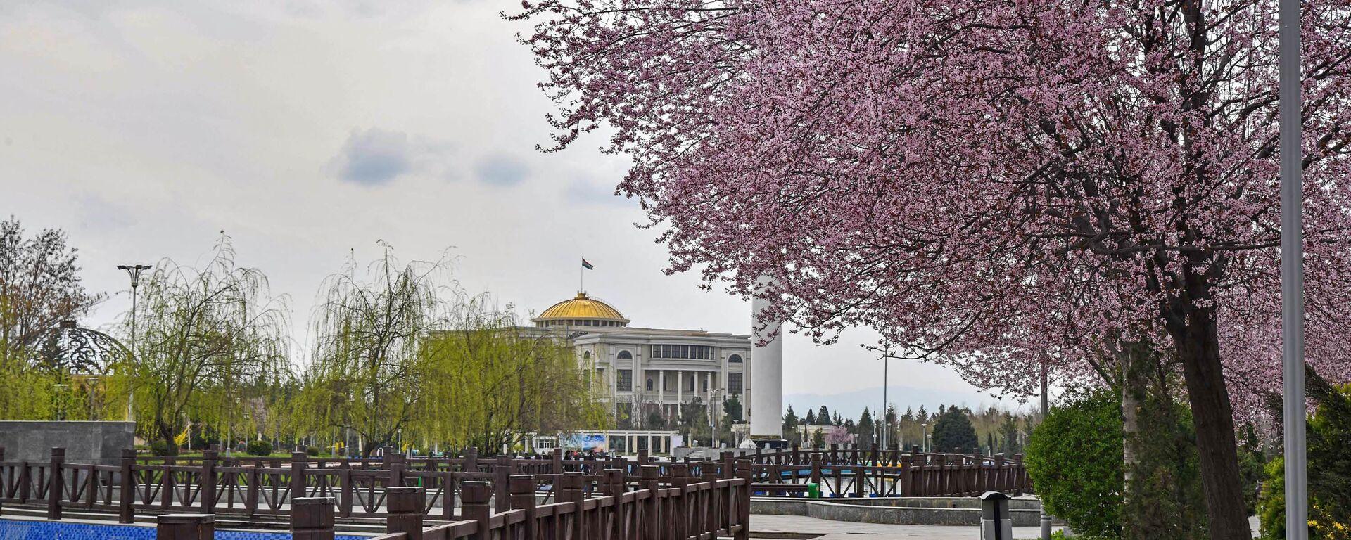 Вид города Душанбе  - Sputnik Тоҷикистон, 1920, 09.04.2021