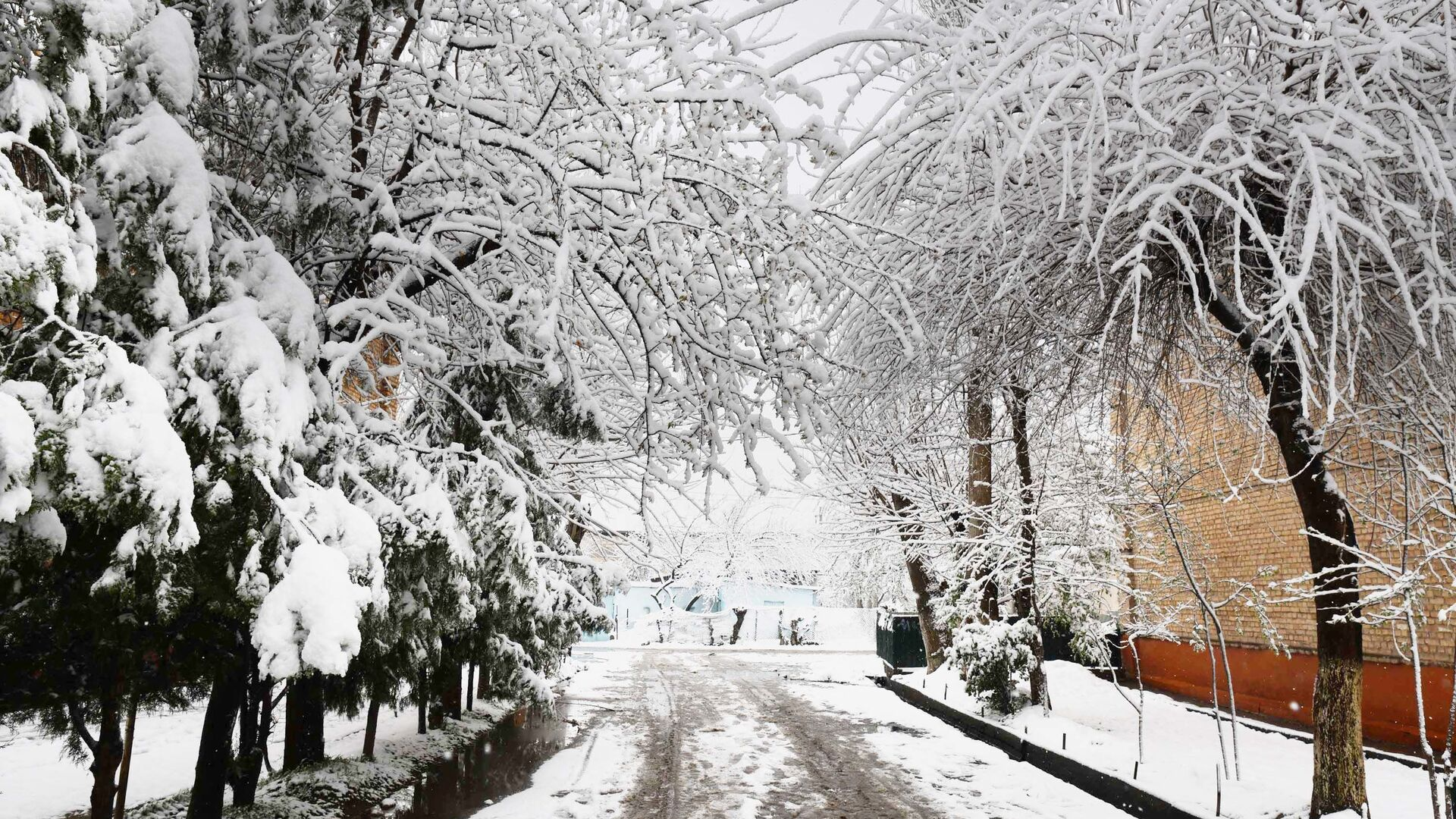 Душанбе в снегу - Sputnik Таджикистан, 1920, 30.09.2021