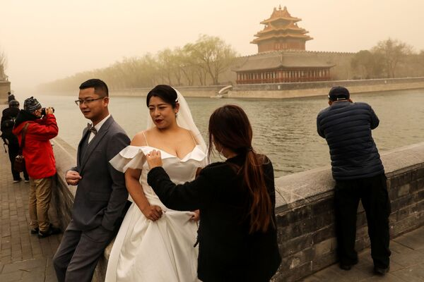 Впрочем, некоторых даже пыльная буря не остановила от желания выйти замуж - Sputnik Таджикистан