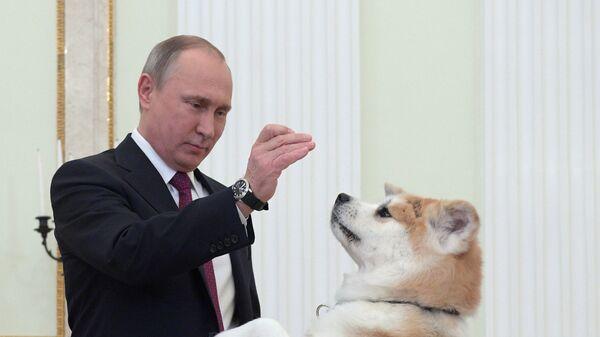 Президент РФ Владимир Путин с собакой Юмэ - Sputnik Таджикистан