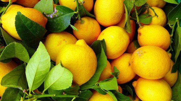Лимоны, архивное фото - Sputnik Таджикистан