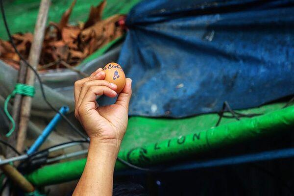 Протестующий с пасхальным яйцом во время демонстрации в Мьянме  - Sputnik Таджикистан