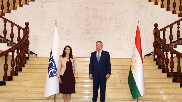 Встреча главы МИД Таджикистана Сироджиддина Мухриддина и председателя ОБСЕ Анн Линде - Sputnik Таджикистан