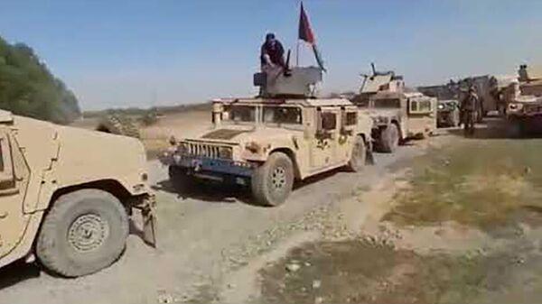 Талибы вышли к границам Таджикистана разгромив армию Афганистана - Sputnik Таджикистан