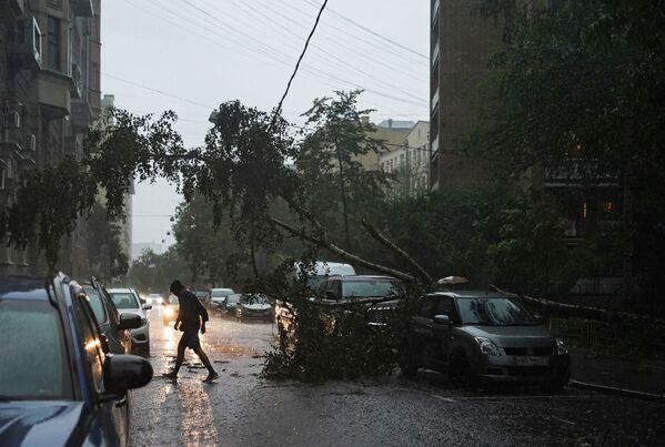 Кроме того, сильные порывы ветра ломали деревья, сносили крыши домов и другие конструкции.  - Sputnik Таджикистан