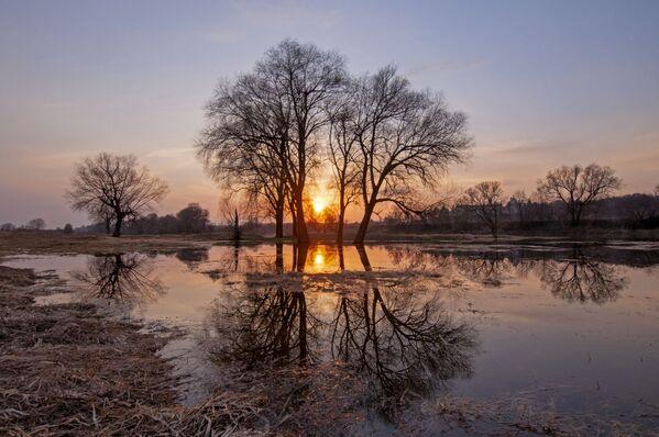 Река в районе Звенигорода вышла из берегов и немного залила пойму. - Sputnik Таджикистан