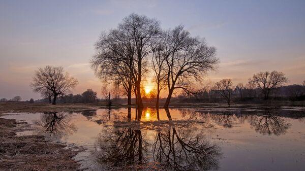Снимок Апельсиновый закат на Москве-реке Анны Тыщенко, ставший одним из победителей фотоконкурса «Моя Планета. Россия в деталях» - Sputnik Таджикистан