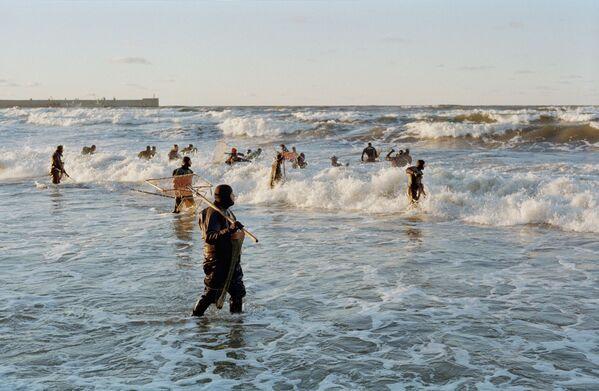 """Янтарь - самая большая ценность Калининградской области. Здесь находится около 90% всех разведанных мировых запасов камня.Добыча янтаря запрещена, но можно собирать """"слезы моря"""" после шторма, когда мощные волны, смывающие пляжи на побережье, поднимают камни со дна и выносят к берегу. - Sputnik Таджикистан"""