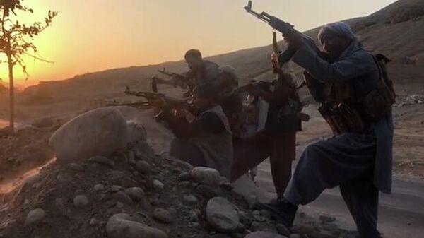 Талибы хозяйничают на севере Афганистана  - Sputnik Таджикистан