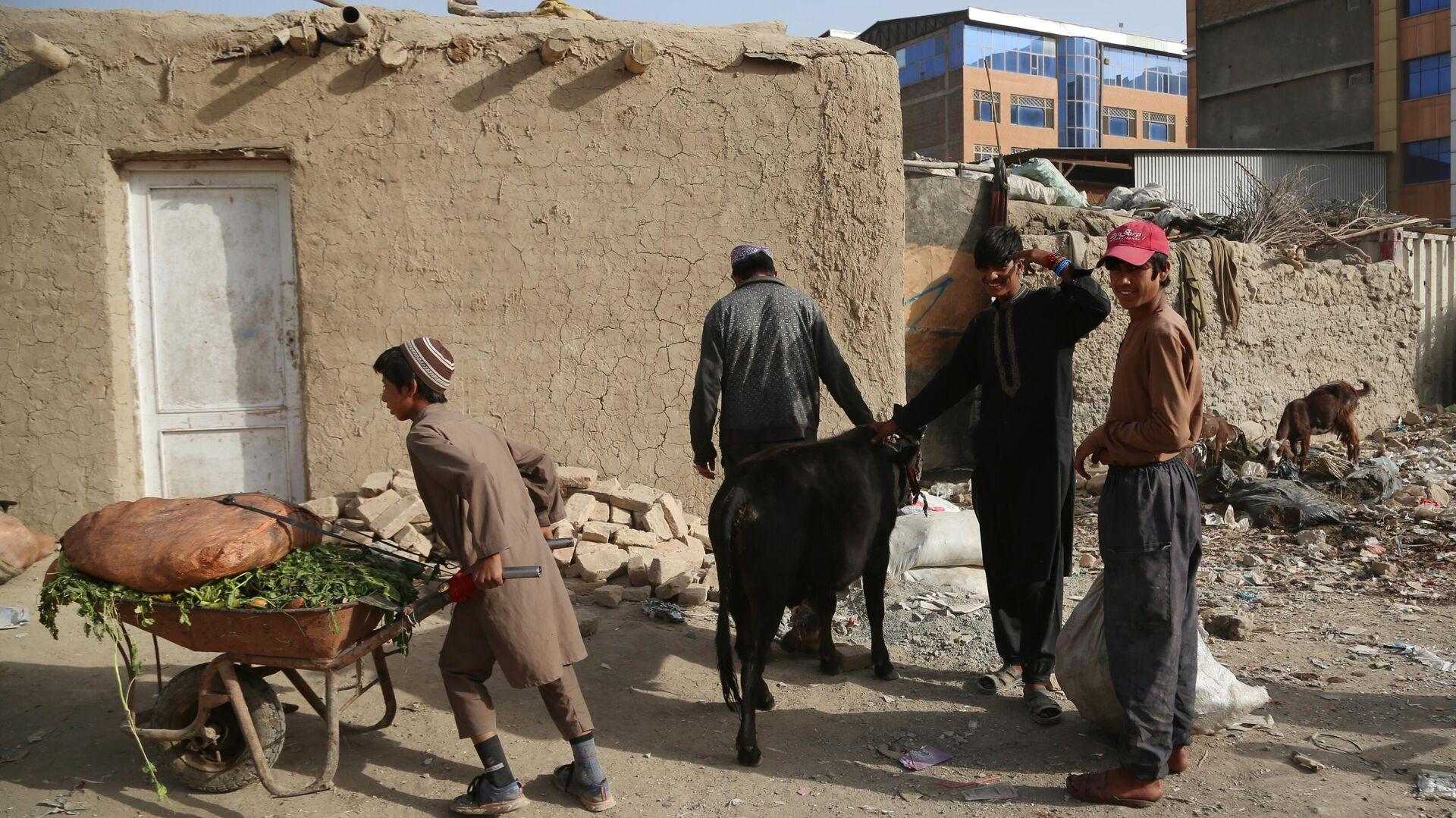 Беженцы из зоны боевых действий в Афганистане - Sputnik Таджикистан, 1920, 20.08.2021