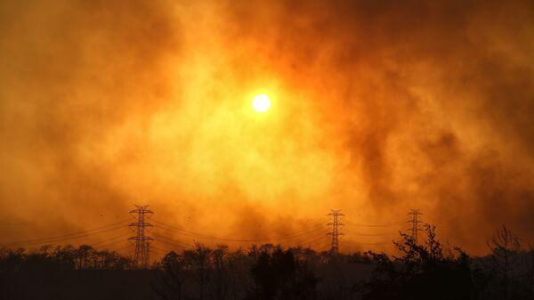 Дым над лесом вокруг Манавгата - Sputnik Таджикистан