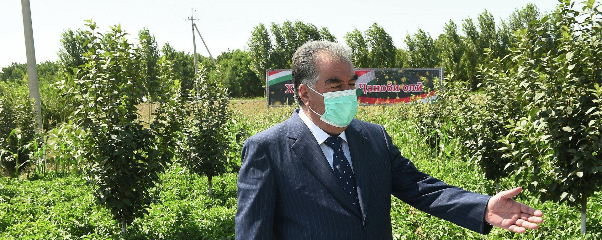 Визит президента Таджикистана Эмомали Рахмона в Согдийскую область - Sputnik Таджикистан, 1920, 24.09.2021