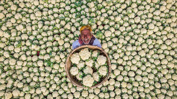 Счастливый фермер - Sputnik Таджикистан