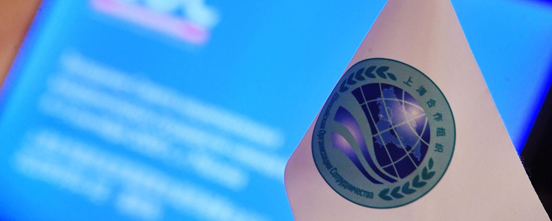 Заседание Совета национальных координаторов государств ШОС - Sputnik Тоҷикистон, 1920, 13.09.2021