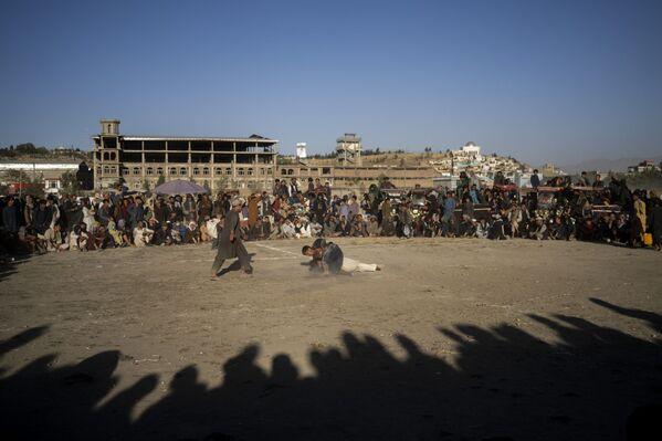 Афганцы смотрят традиционный поединок по борьбе в парке Чаман-э-Хозари. - Sputnik Таджикистан