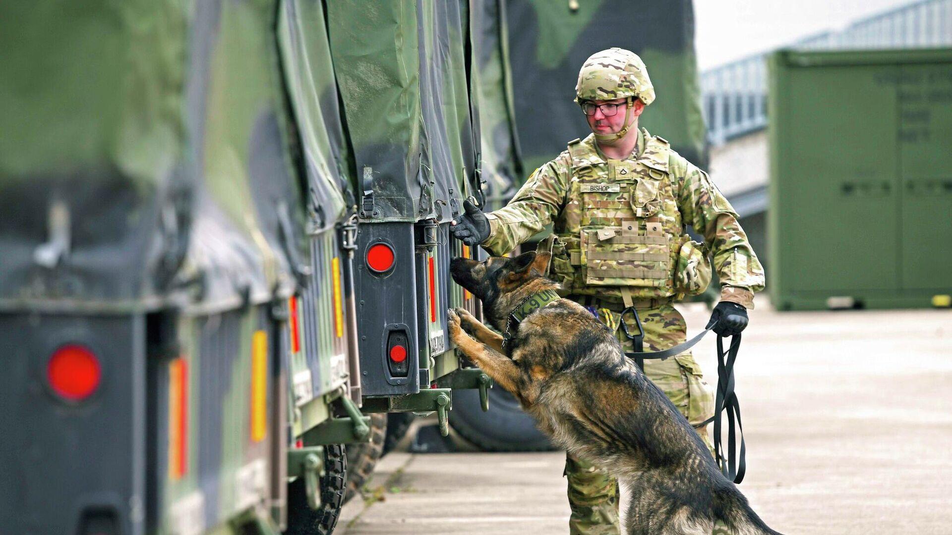 Солдат армии США и армейская военная служебная собака, архивное фото - Sputnik Таджикистан, 1920, 28.09.2021