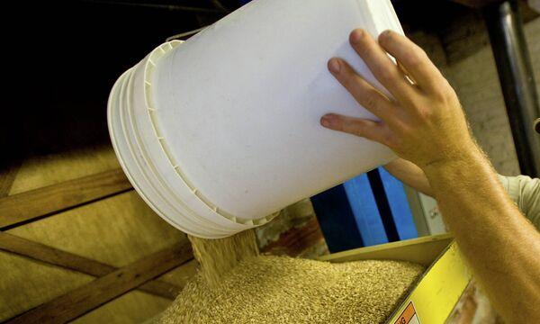 Переработка зерна. Архивное фото - Sputnik Таджикистан