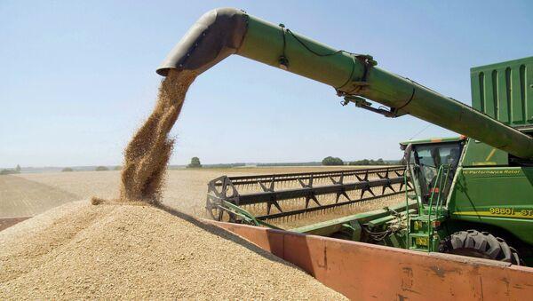 Уборка зерновых, архивное фото - Sputnik Таджикистан