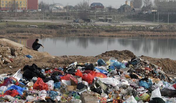 Мусорная свалка в Душанбе. Архивное фото - Sputnik Таджикистан