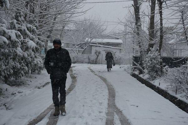 Снегопад в Душанбе 24 февраля 2015 года - Sputnik Тоҷикистон