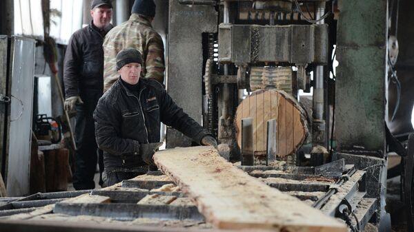 Компания по переработке древесины. Архивное фото - Sputnik Таджикистан
