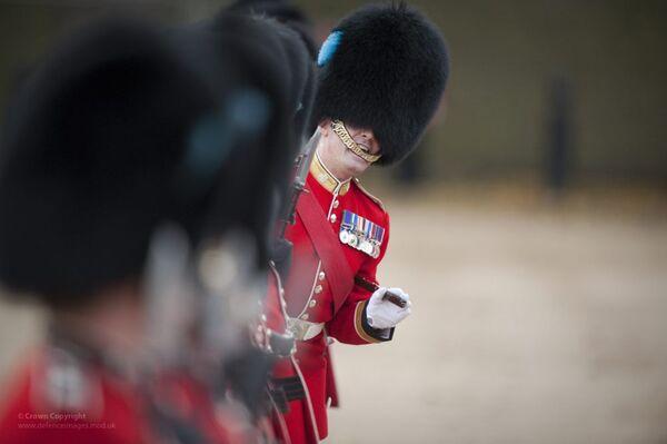 Британский королевский гвардеец в Букингемском дворце - Sputnik Таджикистан
