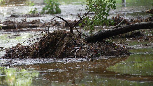 Последствия селевого потока. Архивное фото - Sputnik Таджикистан