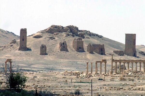 Вид на остатки римского города в Пальмире в мае 2015 года - Sputnik Таджикистан