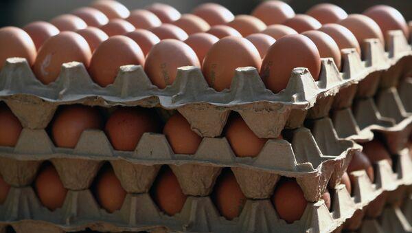 Яйца. Архивное фото - Sputnik Таджикистан