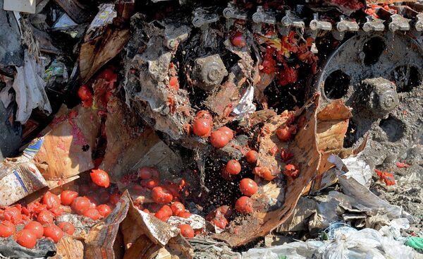 Уничтожение санкционных продуктов - Sputnik Таджикистан