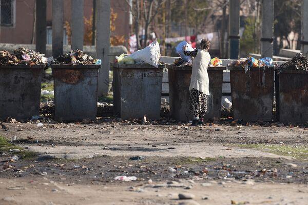 На одной из мусорок в Душанбе. Архивное фото - Sputnik Таджикистан