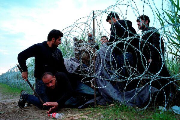 Сирийские беженцы пересекают границу, пытаясь попасть из Сербии в Венгрию. Архивное фото. - Sputnik Таджикистан