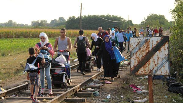 Ситуация на венгерско-сербской границе - Sputnik Тоҷикистон