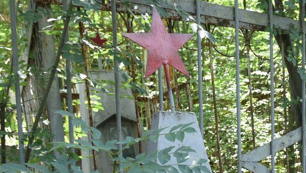 Звезда на надгробии могилы воина Великой Отечественной войны. Архивное фото - Sputnik Таджикистан